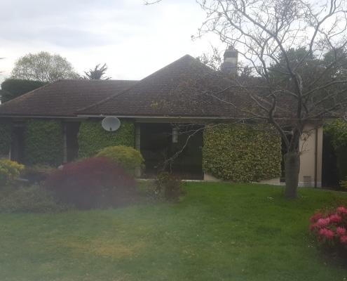 Bungalow Blitz | Back Garden | Before Picture